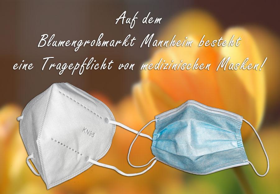Auf dem Blumengroßmarkt Mannheim besteht eine Tragepflicht von medizinischen Masken!